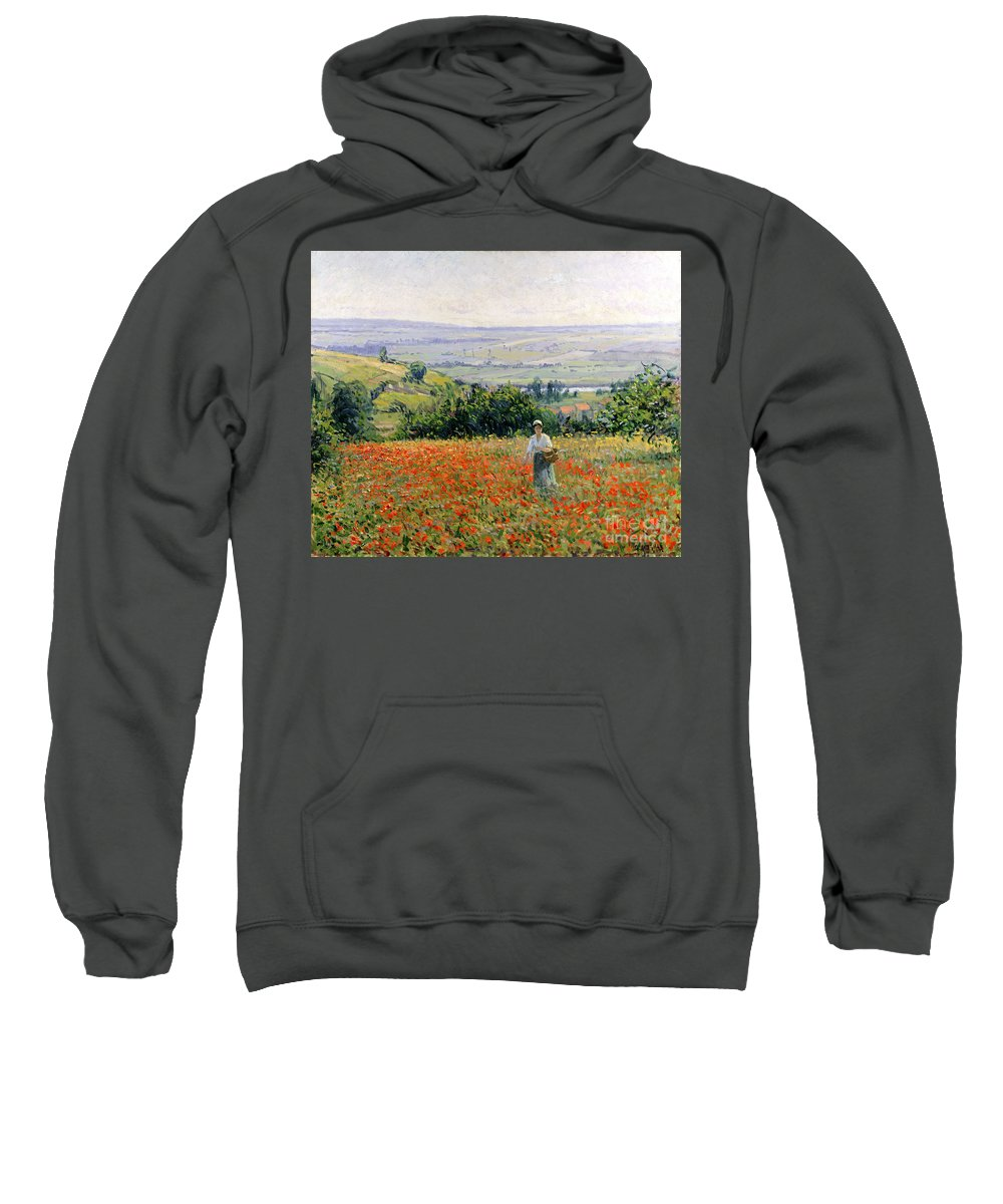 Flowers In A Basket Hooded Sweatshirts T-Shirts