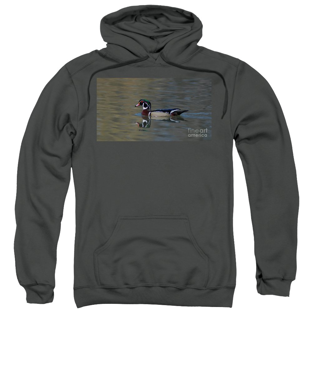 Duck Sweatshirt featuring the photograph Wood Duck - Male by Ronald Grogan