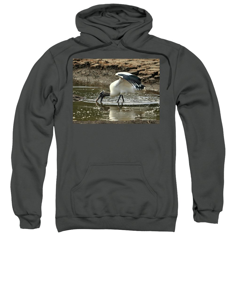 Nature Sweatshirt featuring the photograph Wood Stork Fishing by Al Powell Photography USA