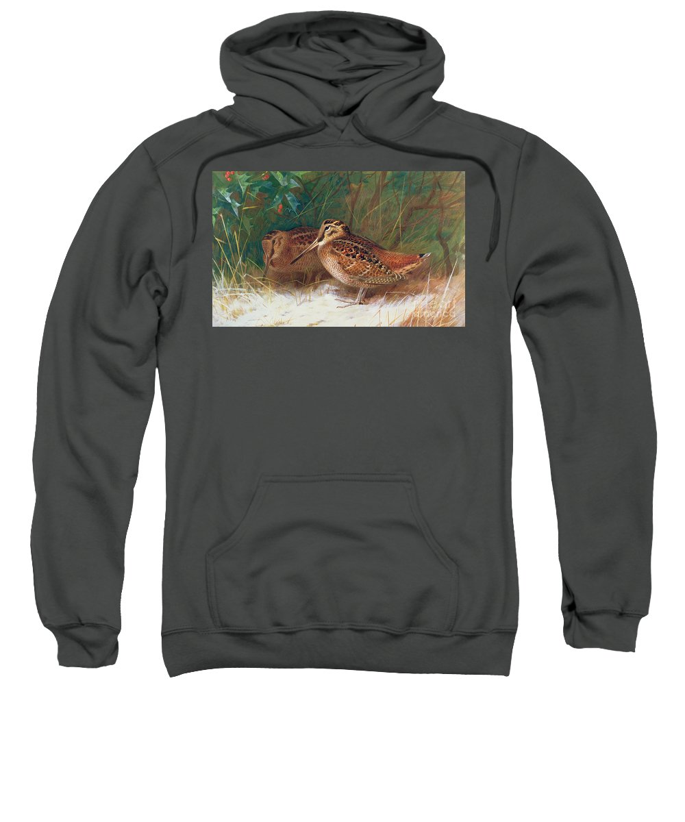 Woodcock In The Undergrowth Sweatshirt featuring the painting Woodcock In The Undergrowth by Archibald Thorburn