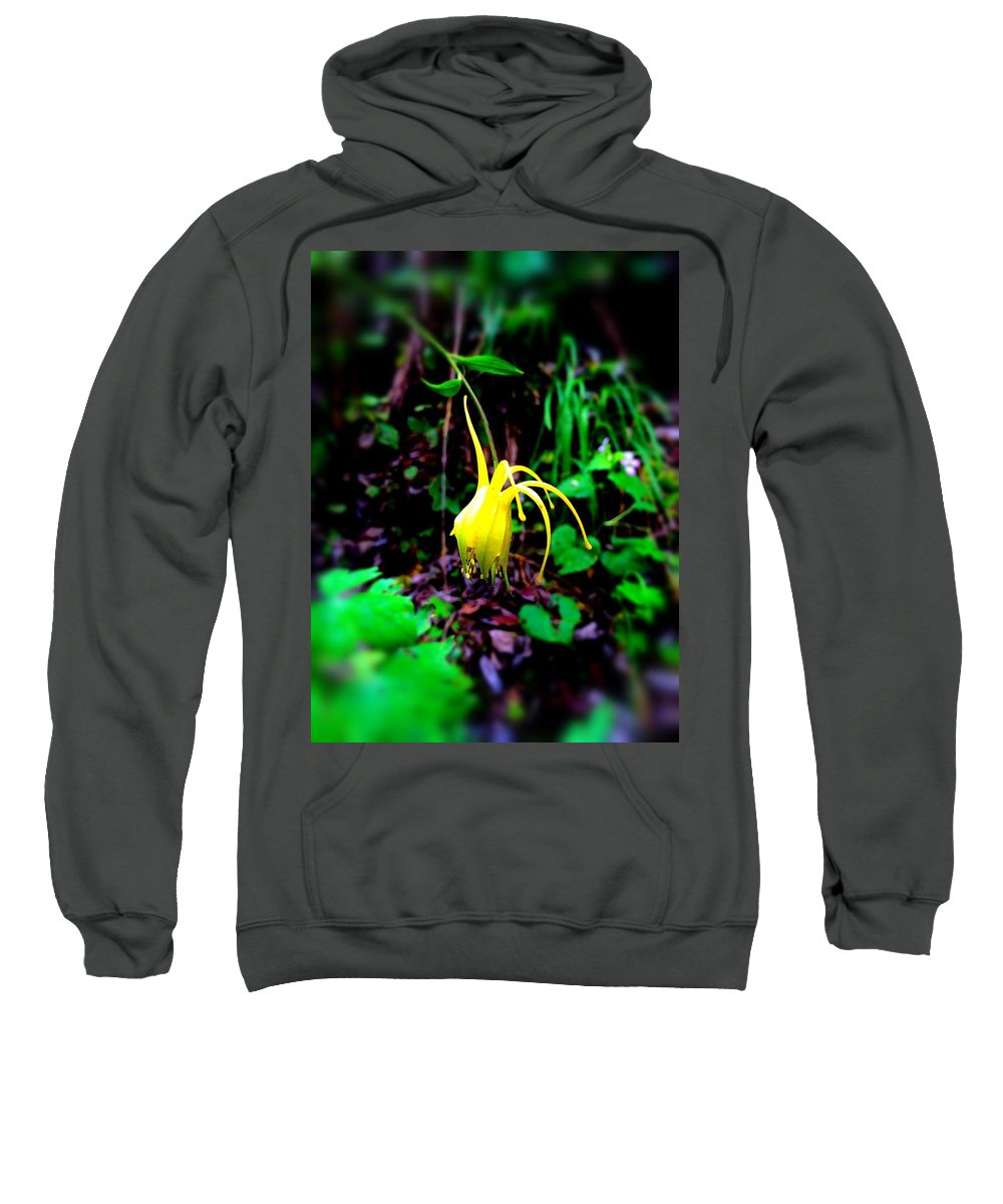 Marie Sweatshirt featuring the photograph Woodland Flower by Marie Webb