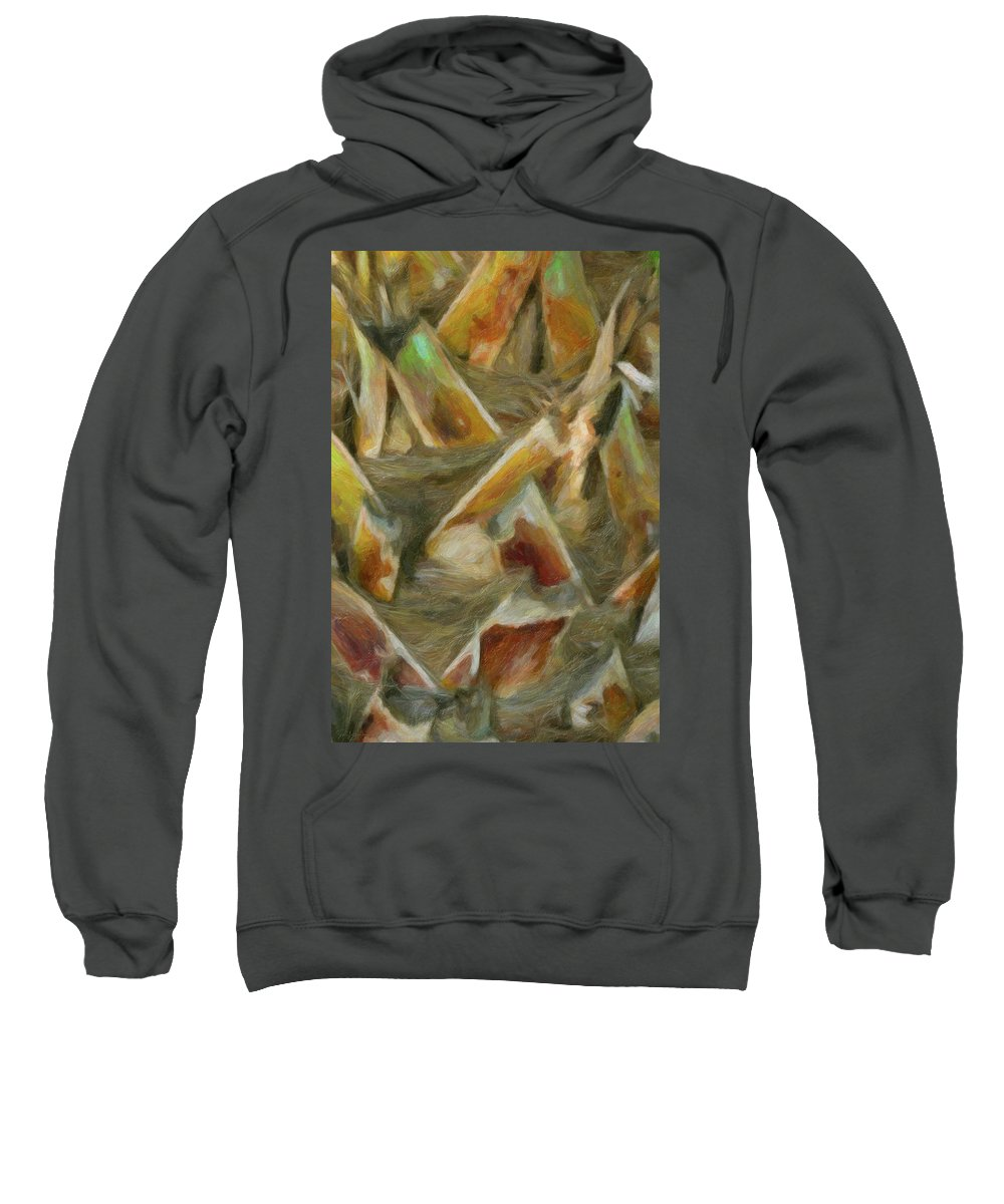 Abstract Sweatshirt featuring the photograph Woven by Ron Blanton