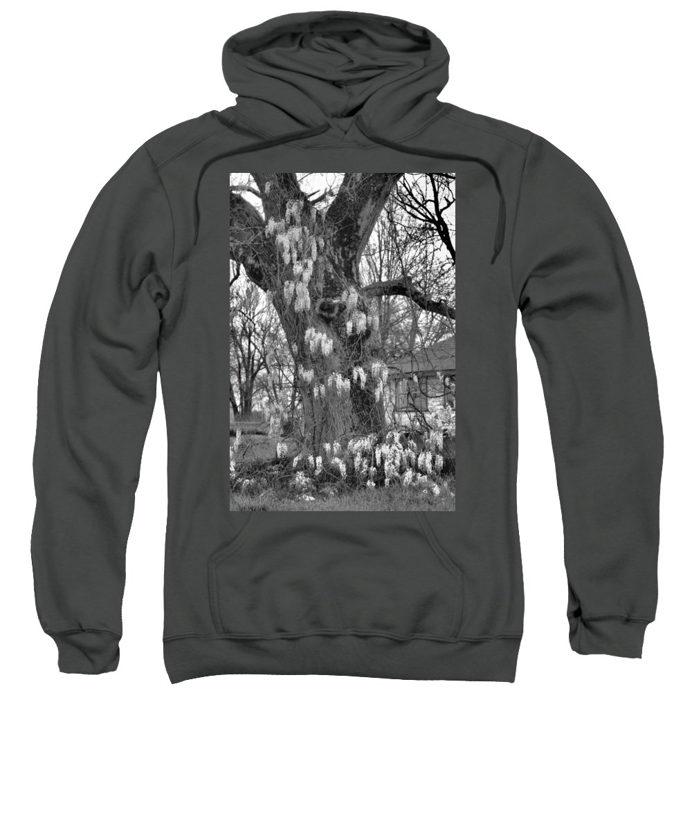 Wysteria Sweatshirt featuring the photograph Wysteria Tree In Black And White by Karen Wagner