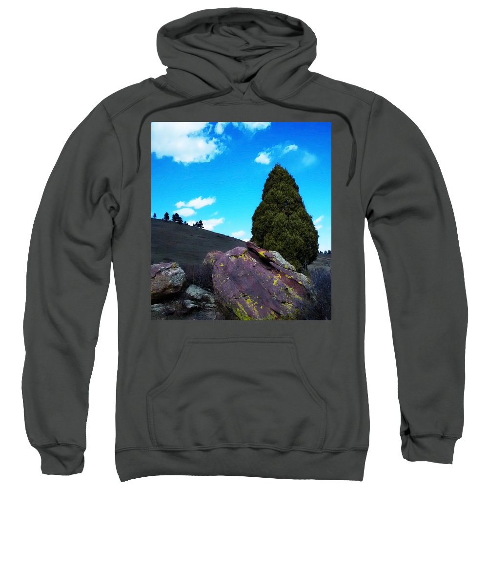 Yellow Sweatshirt featuring the photograph Yellow Lichen by Marilyn Hunt