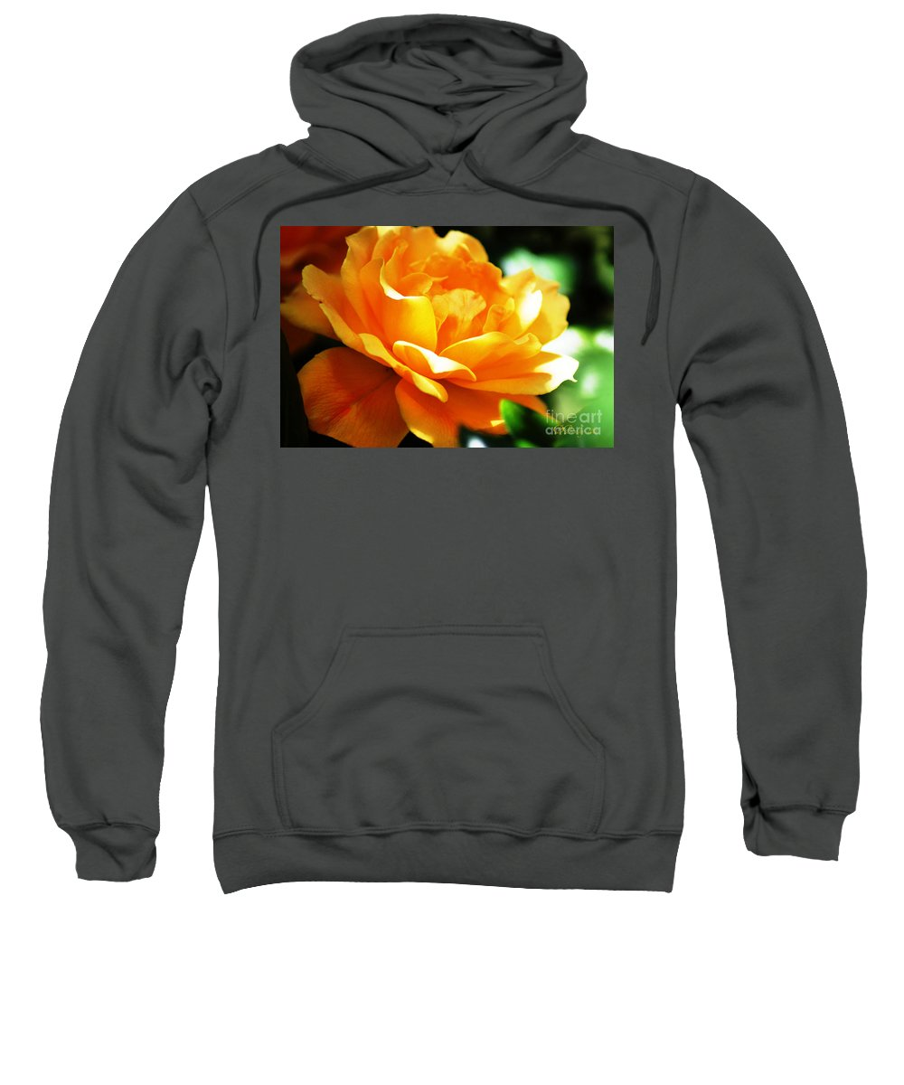 Rose Sweatshirt featuring the photograph Yellow Rose by Donna Bentley