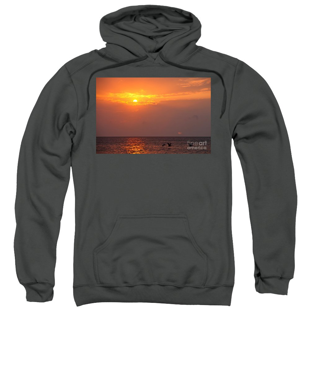 Birds Sweatshirt featuring the photograph Yellow Sunrise And Three Birds by Nadine Rippelmeyer