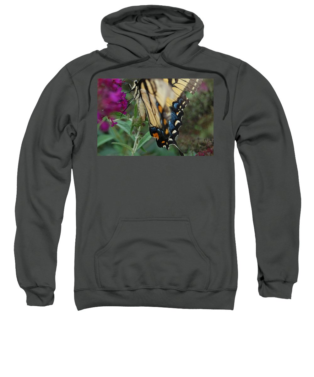 Butterfly. Yellow Sweatshirt featuring the photograph Yellow Swallow by Robert Meanor