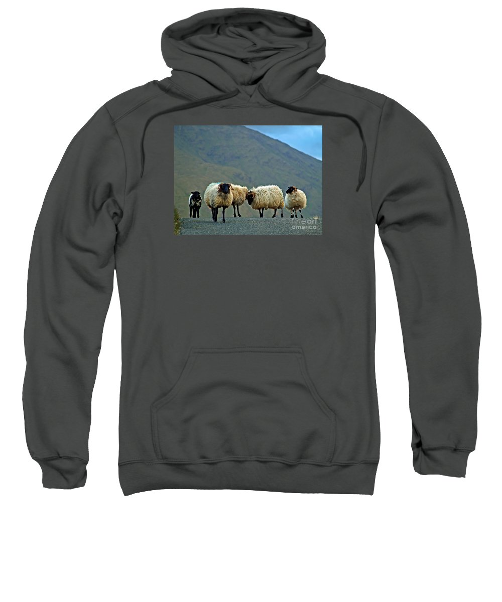 Fine Art Photography Sweatshirt featuring the photograph You're On Our Turf Now by Patricia Griffin Brett