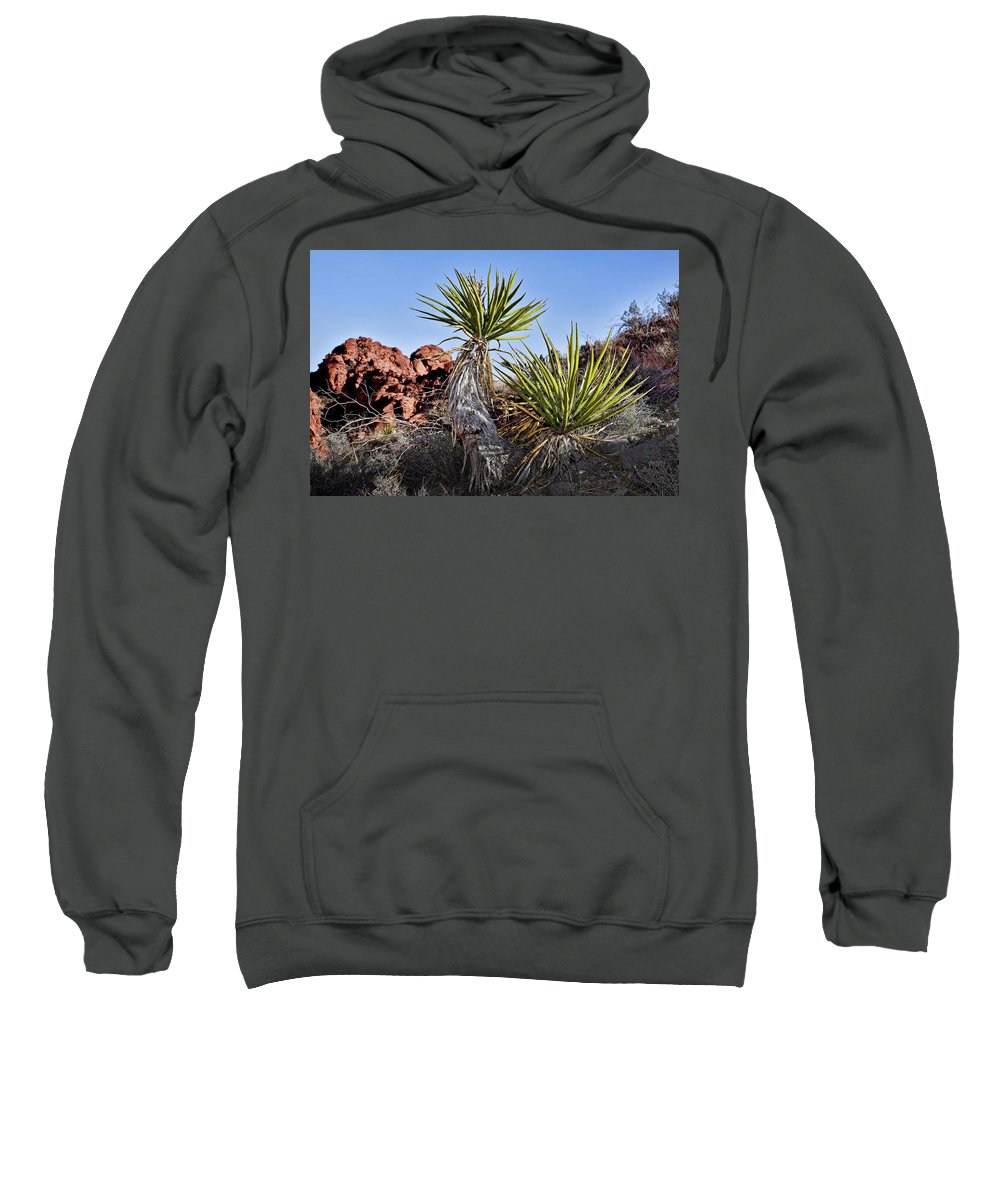Yucca Plant Sweatshirt featuring the photograph Yucca Pair by Kelley King
