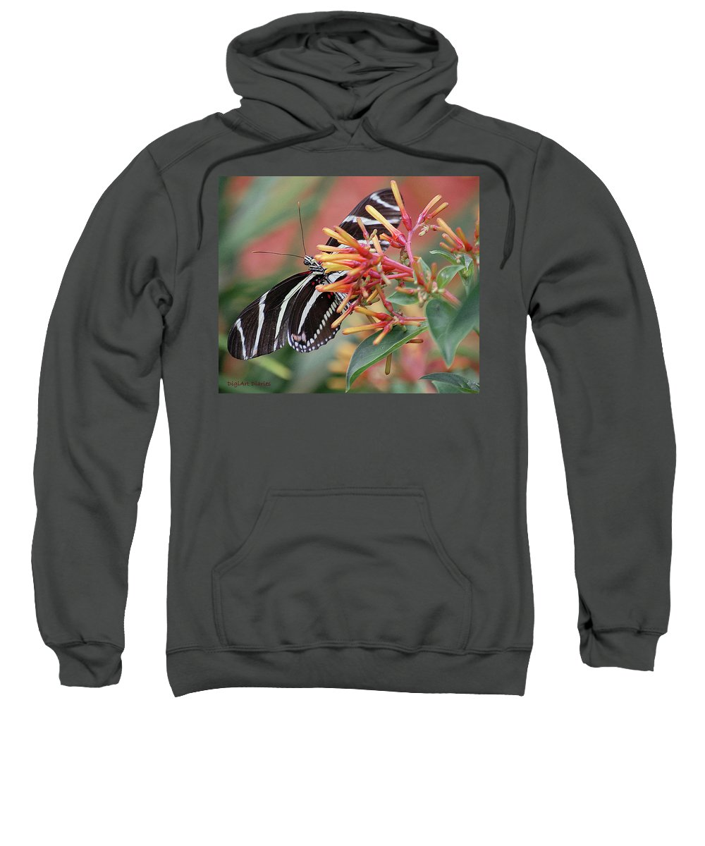 Butterfly Sweatshirt featuring the digital art Zebra Butterfly With Blue Eyes by DigiArt Diaries by Vicky B Fuller