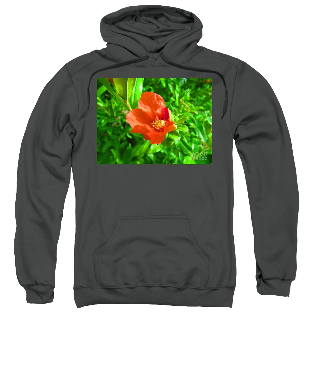Rouge Sweatshirt featuring the photograph Flowers by Adil Boulouiha