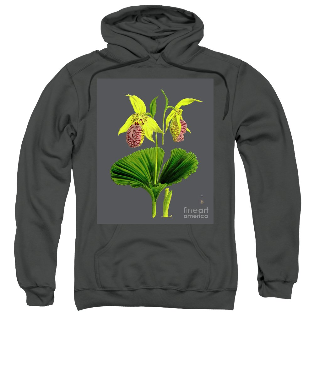 Vintage Sweatshirt featuring the digital art Orchid Old Print by Baptiste Posters