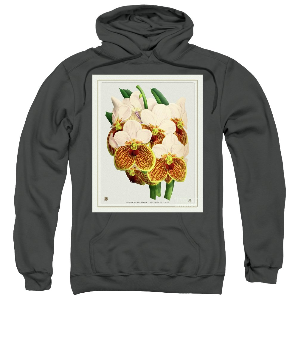 Vintage Sweatshirt featuring the drawing Orchid Vintage Print On Tinted Paperboard by Baptiste Posters
