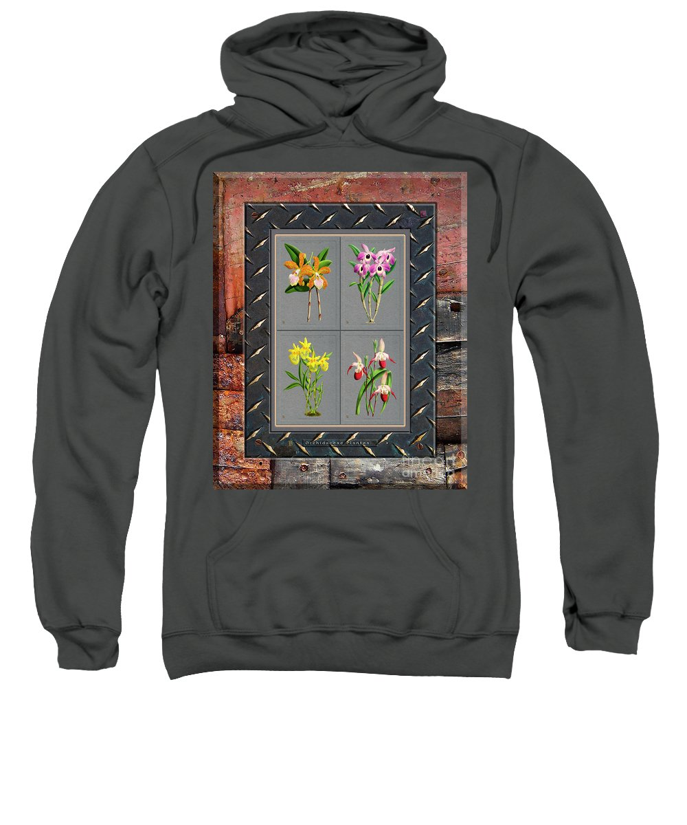 Vintage Sweatshirt featuring the digital art Orchids Antique Quadro Weathered Plank Rusty Metal by Baptiste Posters