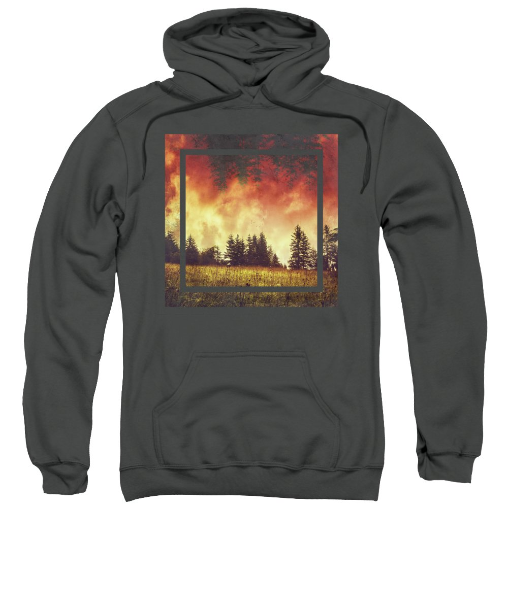 Rain Forest Photographs Hooded Sweatshirts T-Shirts