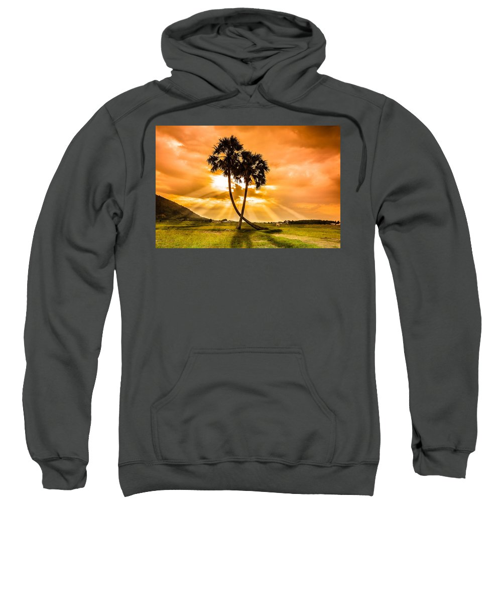 Field Hooded Sweatshirts T-Shirts