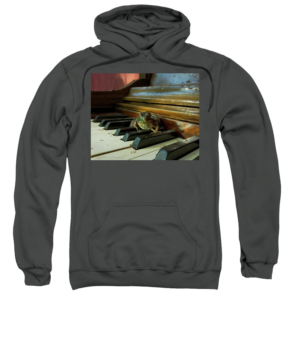 Bull Frog Photographs Hooded Sweatshirts T-Shirts