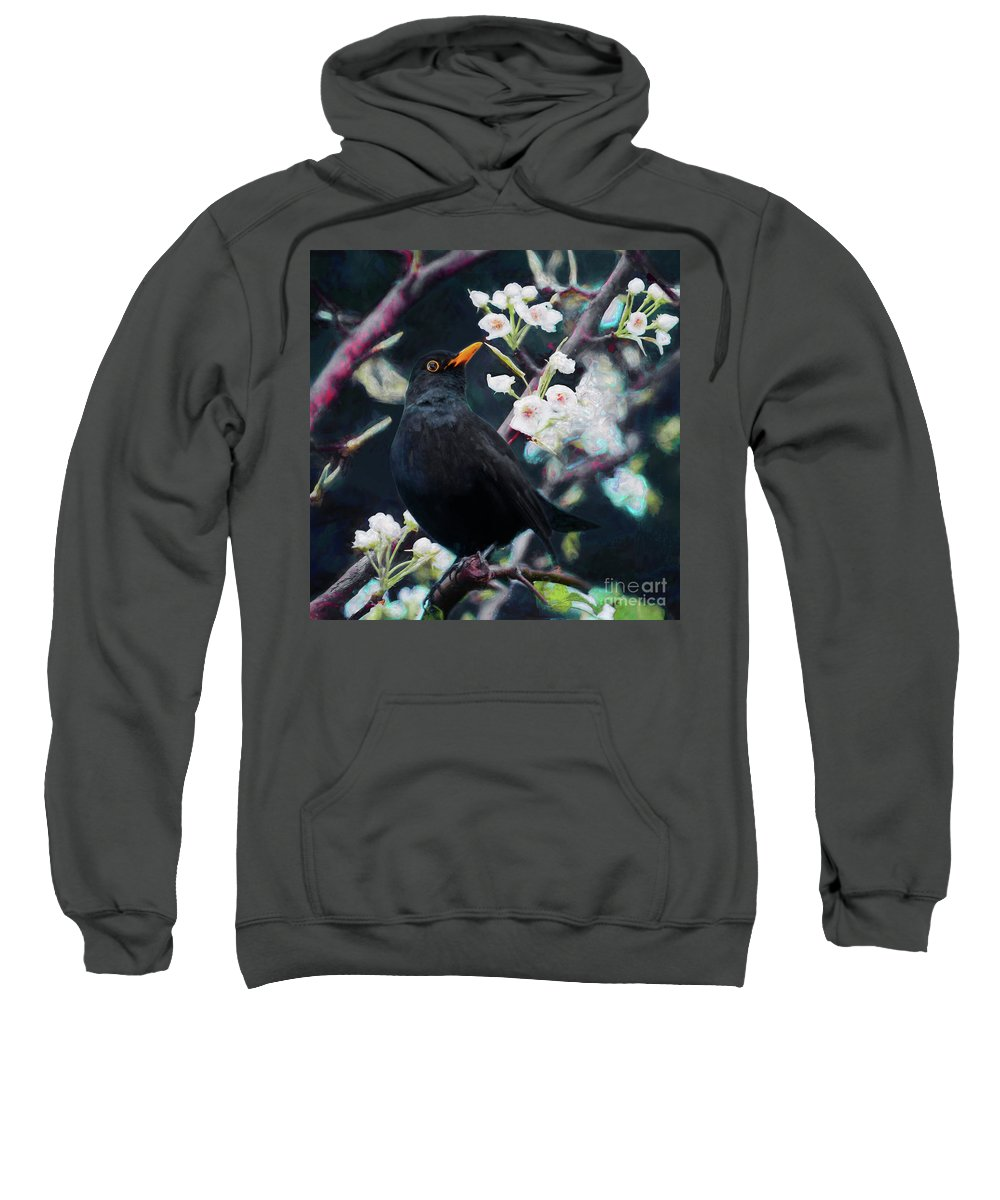 Song Birds Mixed Media Hooded Sweatshirts T-Shirts