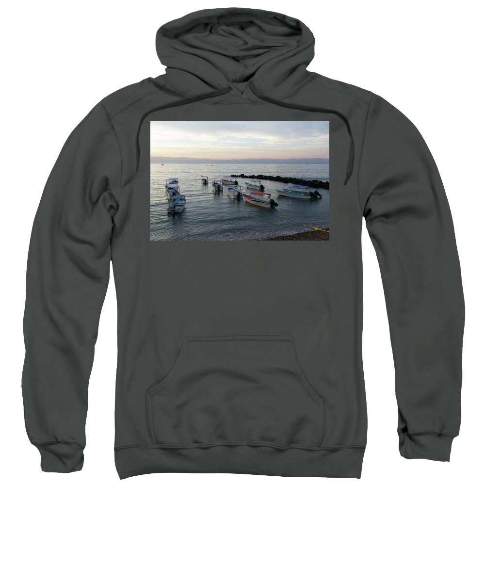 Jack Frost Photographs Hooded Sweatshirts T-Shirts