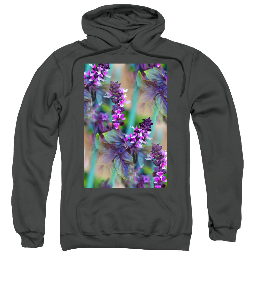Basil Sweatshirt featuring the digital art Thai Twirl by Vanessa Ilott