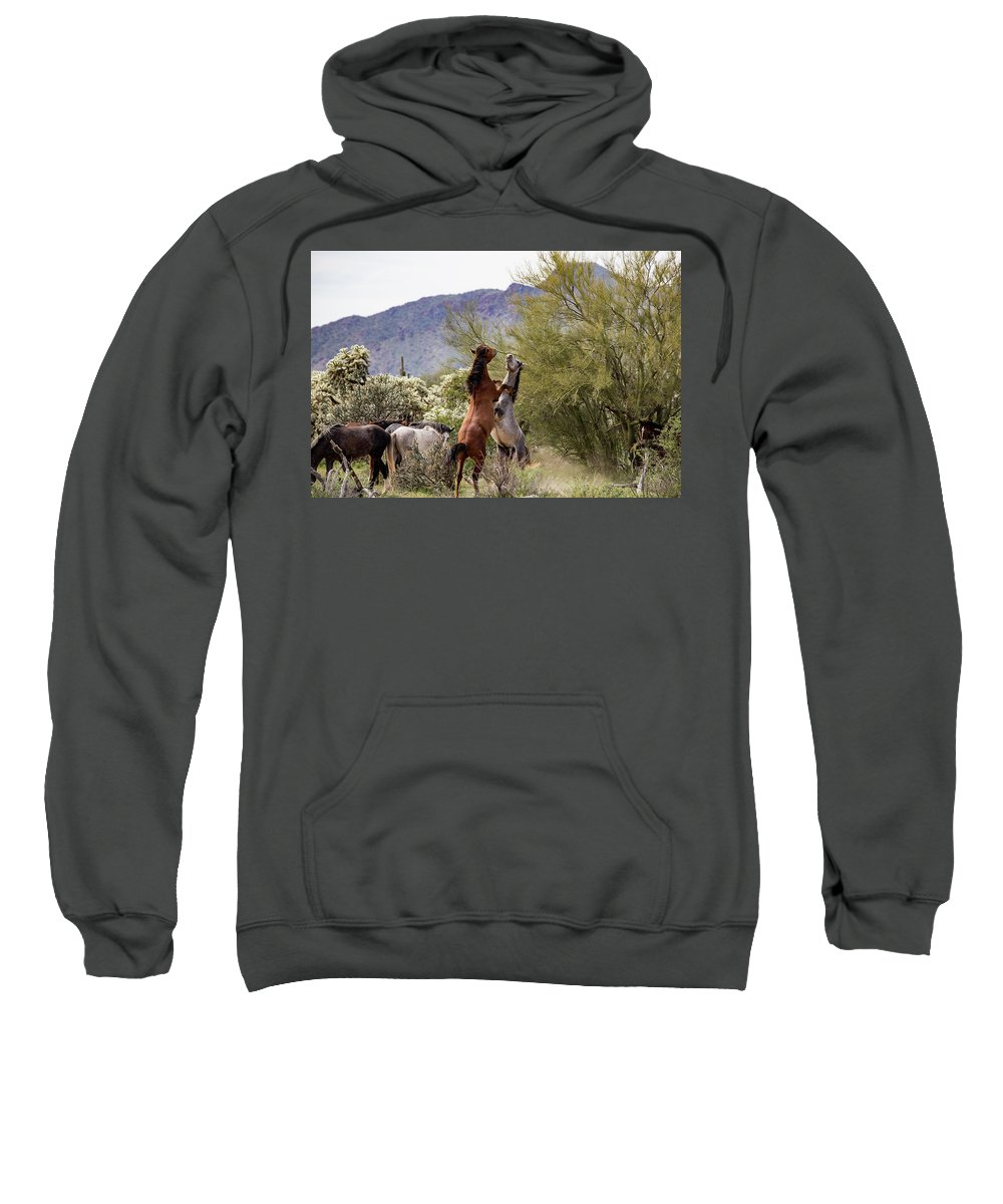 Arizona Sweatshirt featuring the photograph Stand Back by Cathy Franklin