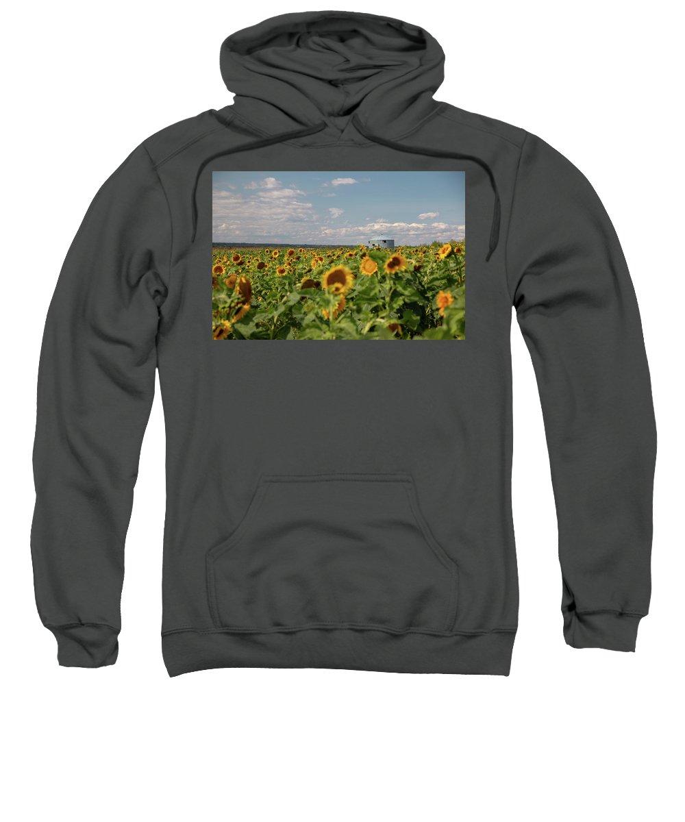 Sunflower Sweatshirt featuring the photograph Sunflower Farm by Cory Huchkowski