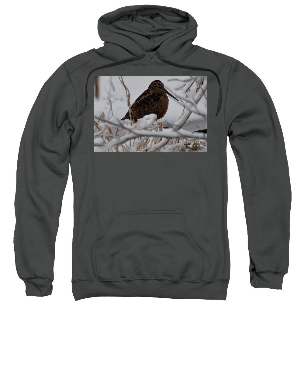 Woodcock Sweatshirts