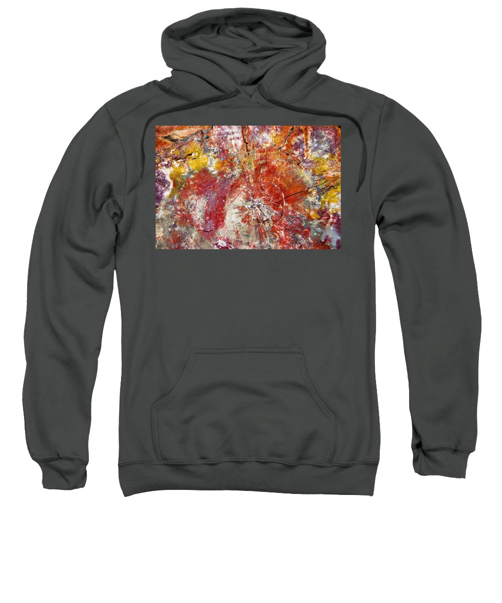 Petrified Wood Stone Texture Abstract Color Skip Hunt Sweatshirt featuring the photograph Painted Desert Wood 1 by Skip Hunt