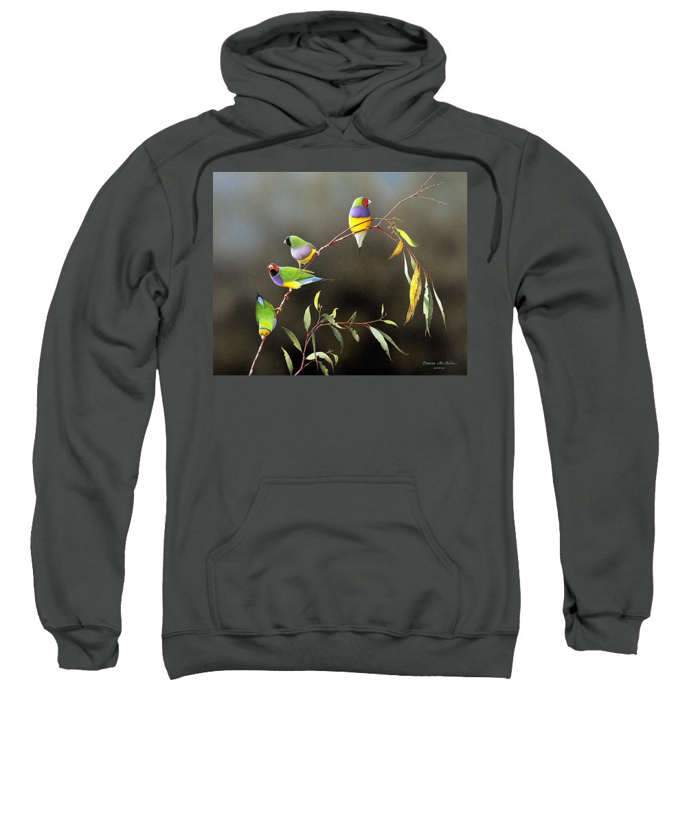 Bird Sweatshirt featuring the painting Three Guys for Every Girl - Gouldian Finches by Frances McMahon