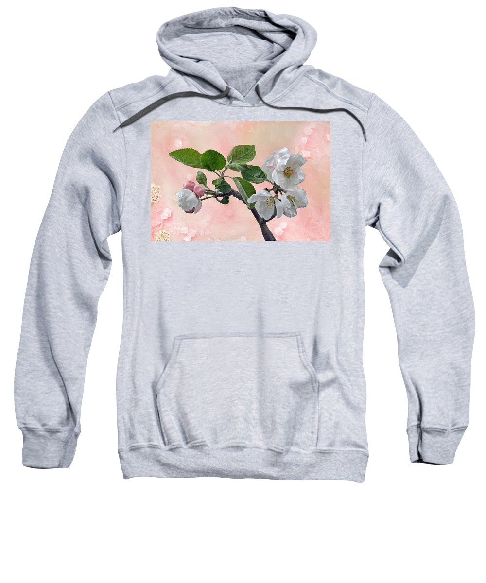 Apple Sweatshirt featuring the photograph Apple Blossoms by Manfred Lutzius