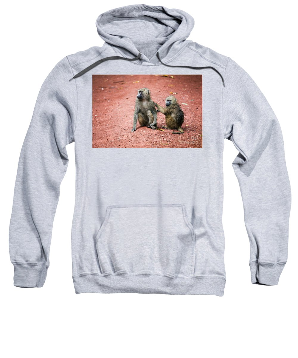 Baboon Sweatshirt featuring the photograph Baboons In African Bush by Michal Bednarek