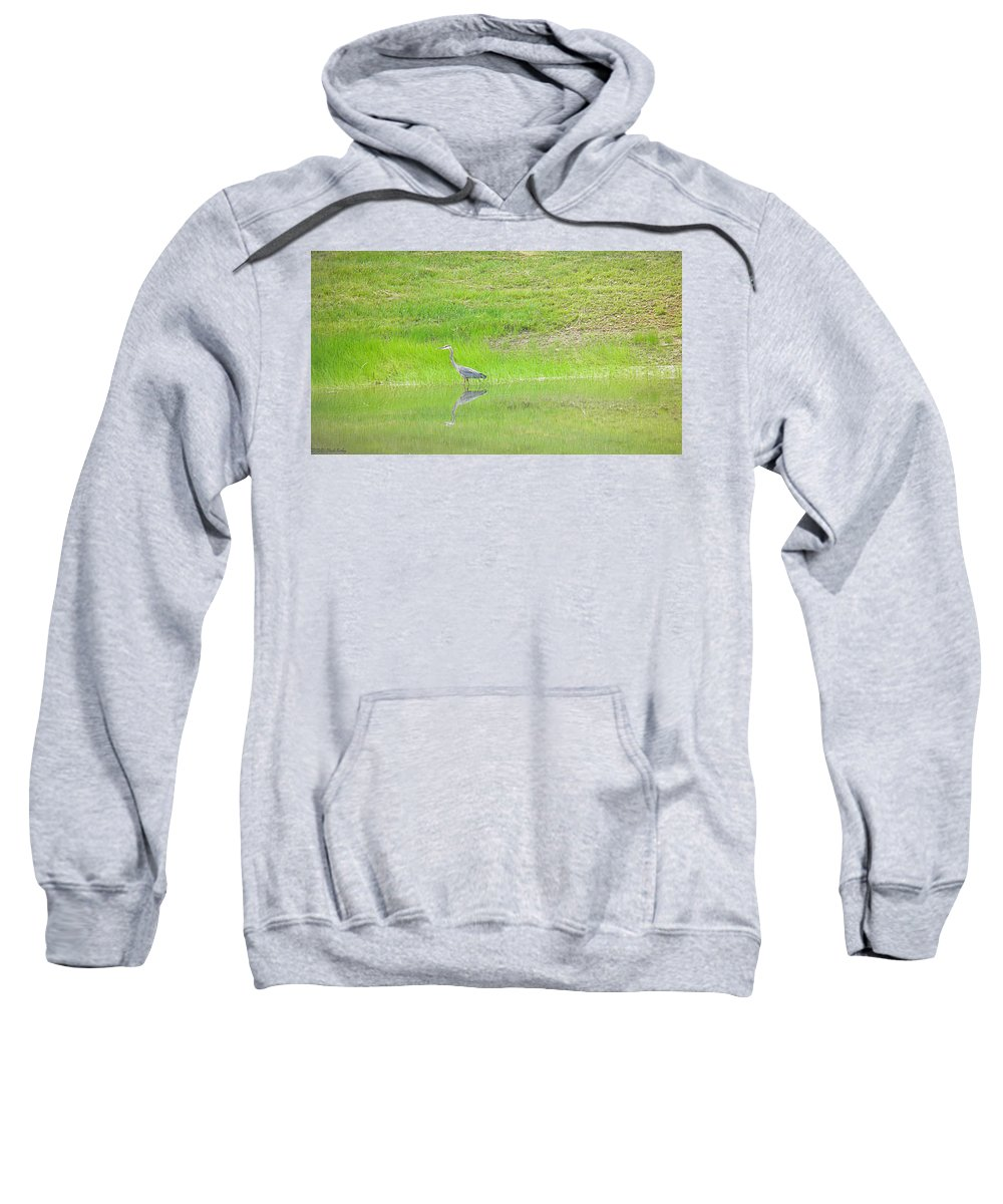 Blue Sweatshirt featuring the photograph Blue Heron by Nick Kirby