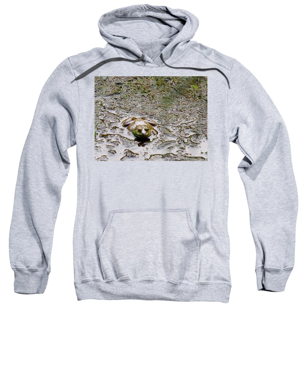 Frog Sweatshirt featuring the photograph Bullfrog In The Mud by Natalie Rotman Cote