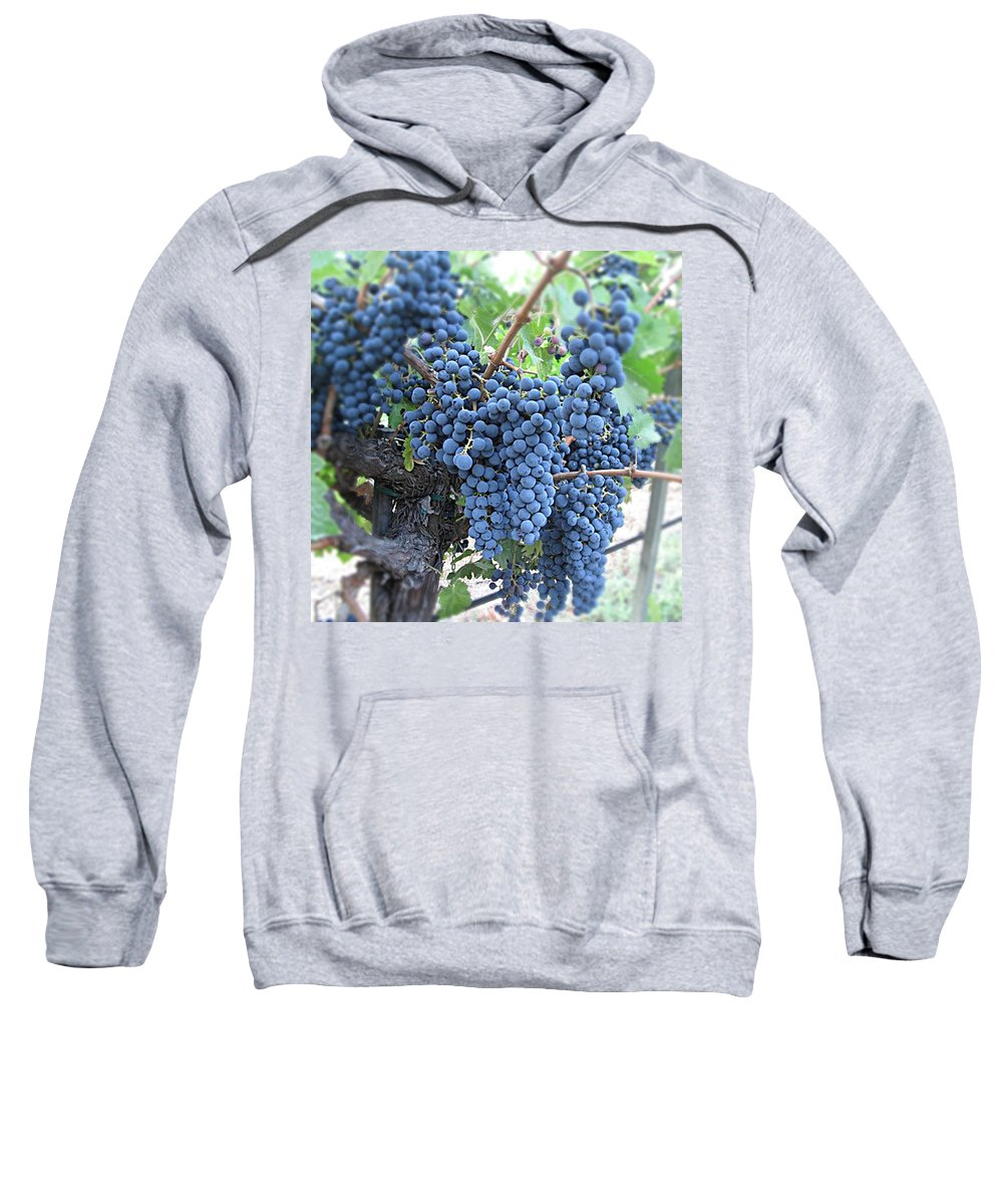 Grape Sweatshirt featuring the photograph Calistoga Bloom by Jean Macaluso