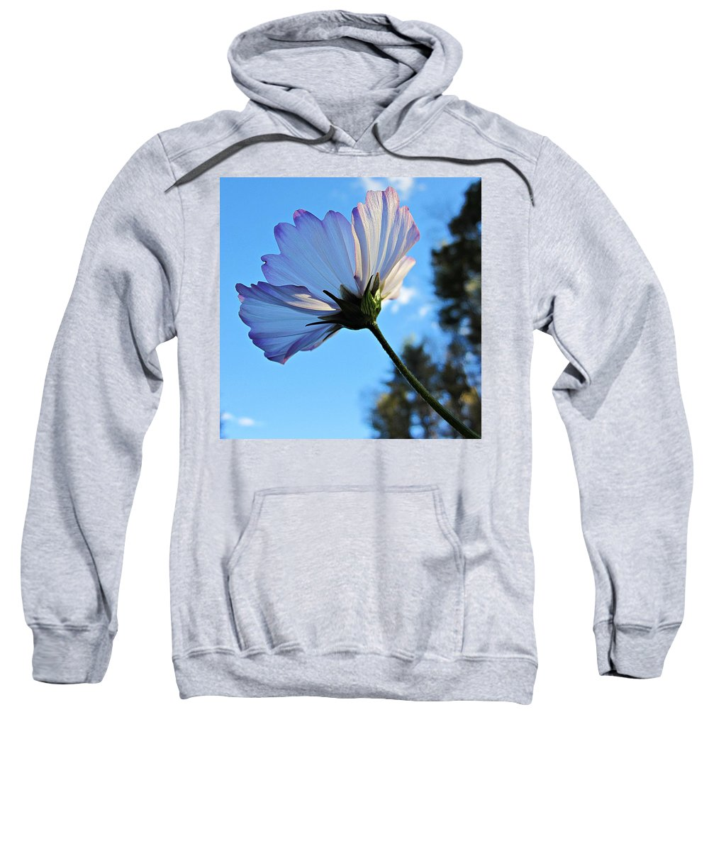 Cosmos Sweatshirt featuring the photograph Cosmos To The Sky by MTBobbins Photography