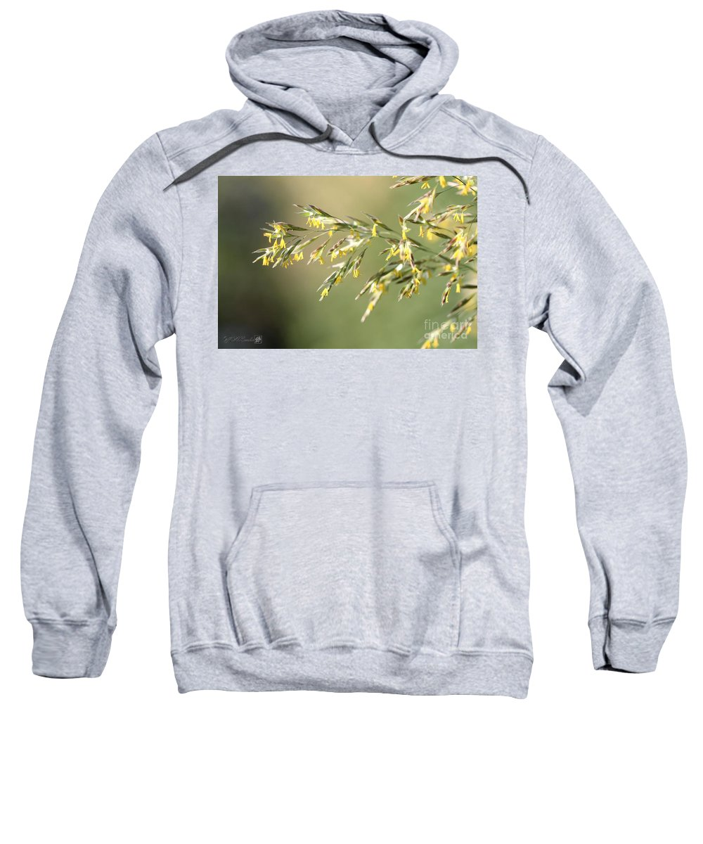 Mccombie Sweatshirt featuring the photograph Flowering Brome Grass by J McCombie