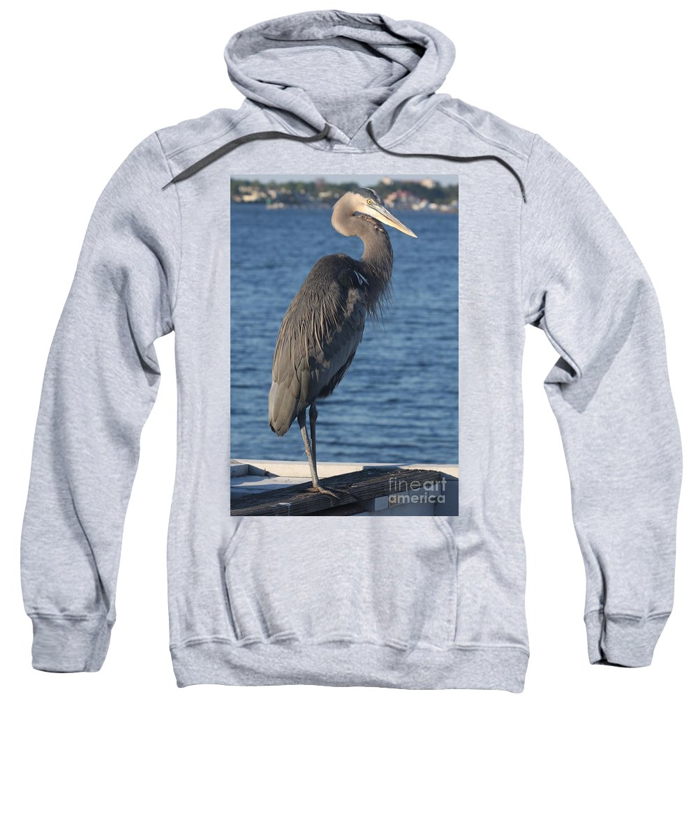 Heron Sweatshirt featuring the photograph Great Blue Heron by Christiane Schulze Art And Photography