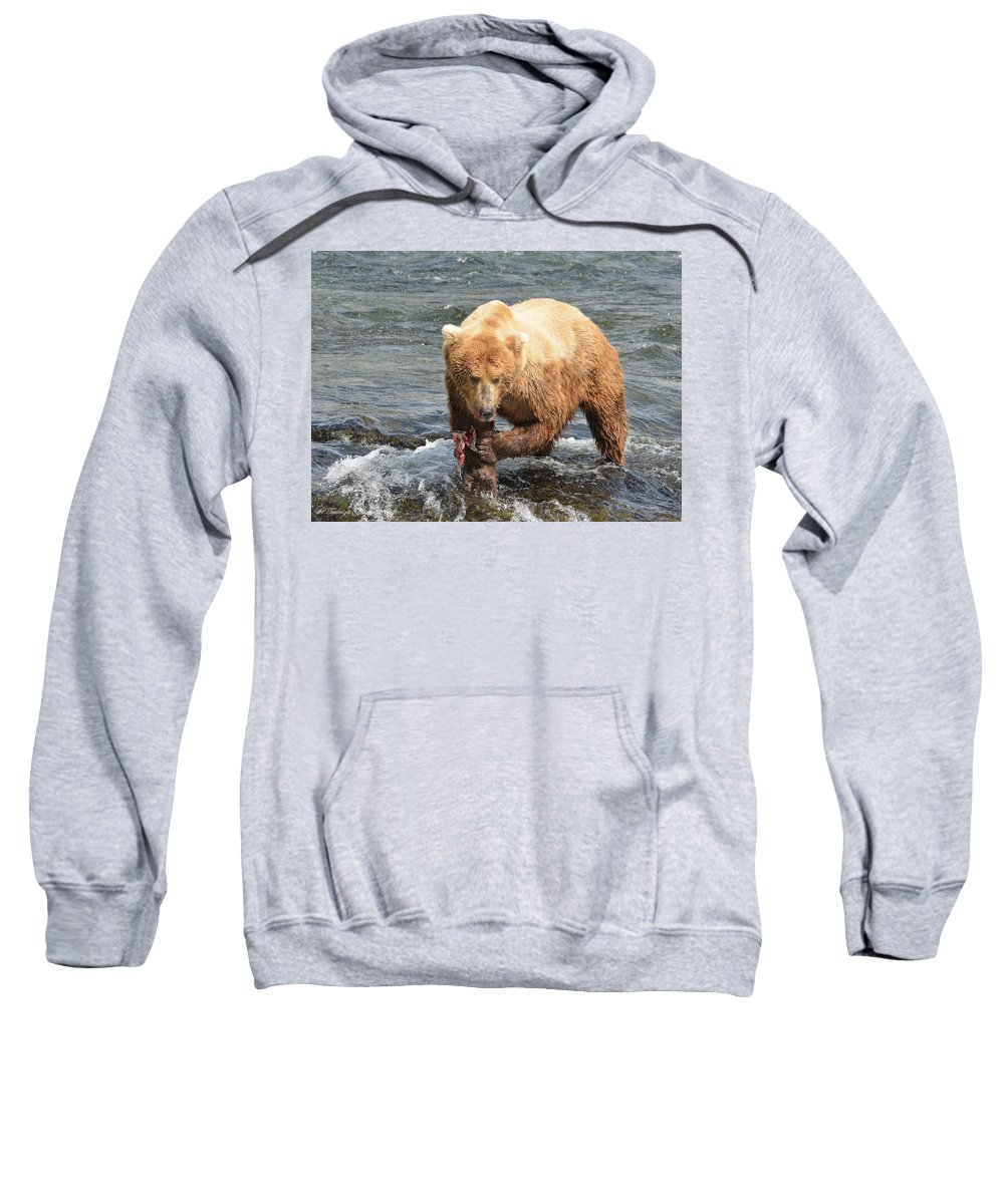 Grizzly Bear Sweatshirt featuring the photograph Grizzly Bear Salmon Fishing by Patricia Twardzik