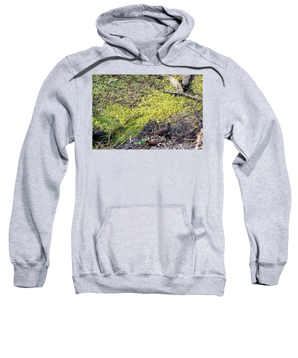 Marsh Sweatshirt featuring the photograph Marshy by Brent Dolliver