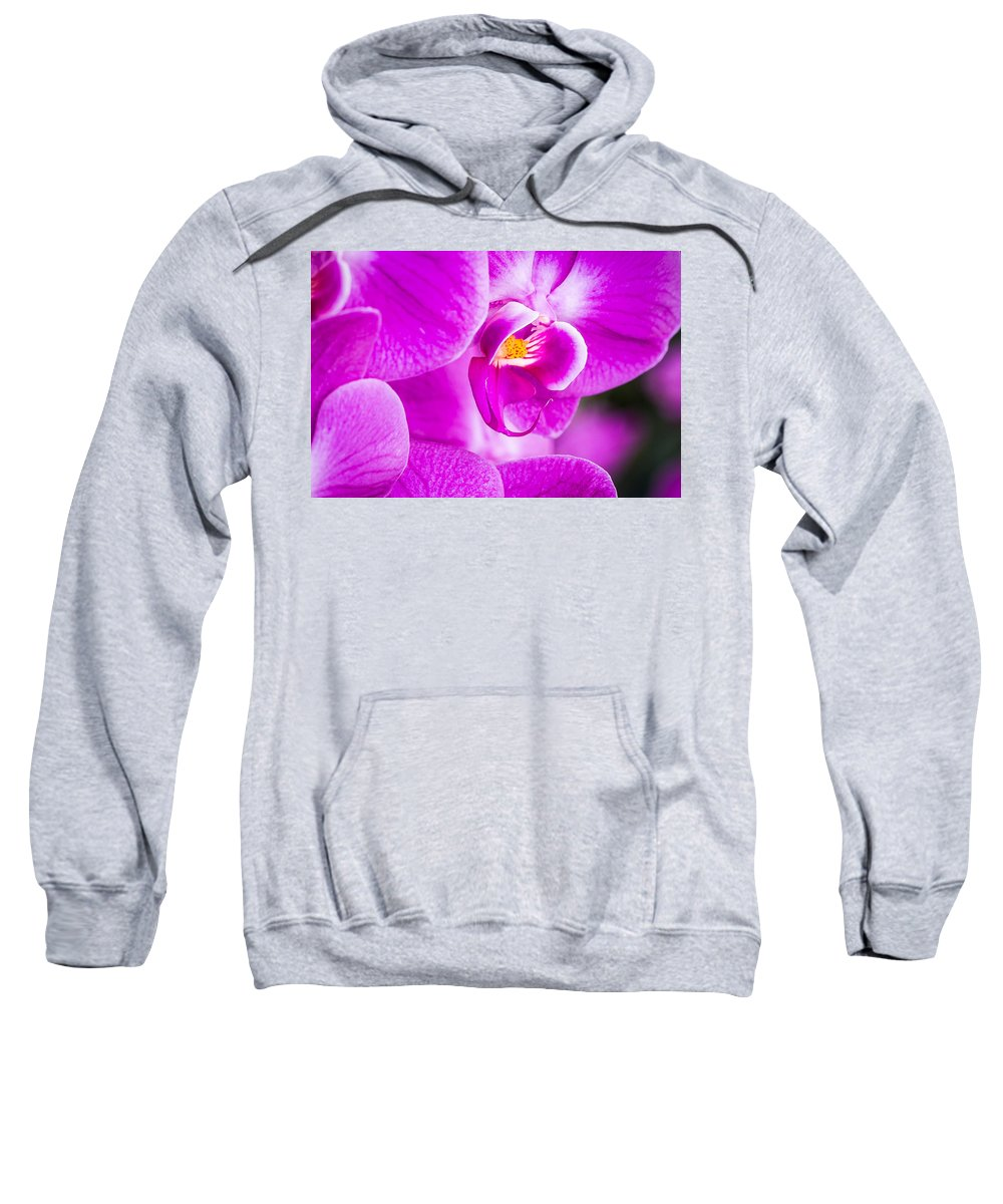 Orchid Sweatshirt featuring the photograph Orchid by Dennis Goodman