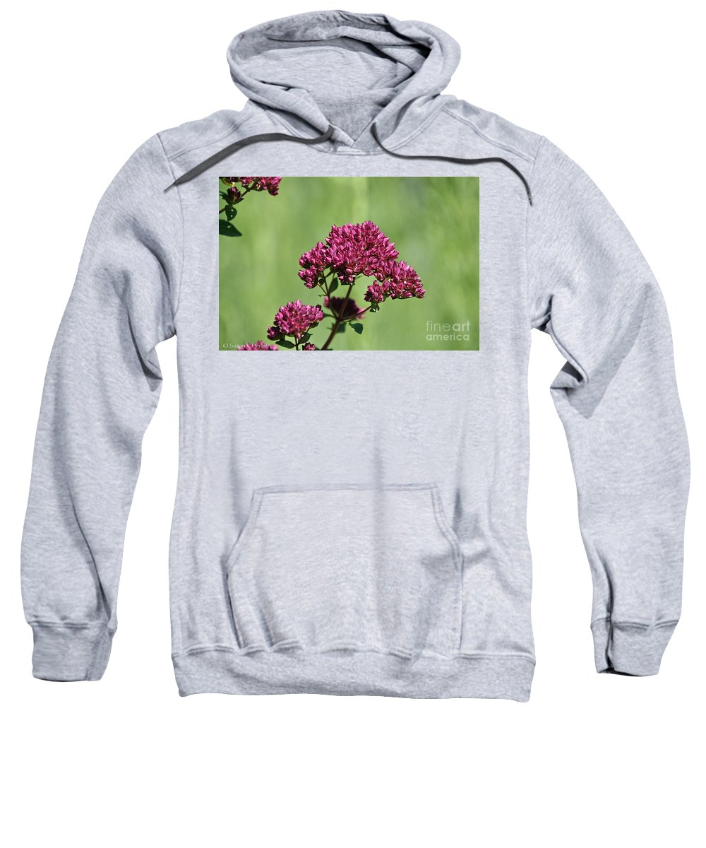 Flower Sweatshirt featuring the photograph Oregano by Susan Herber
