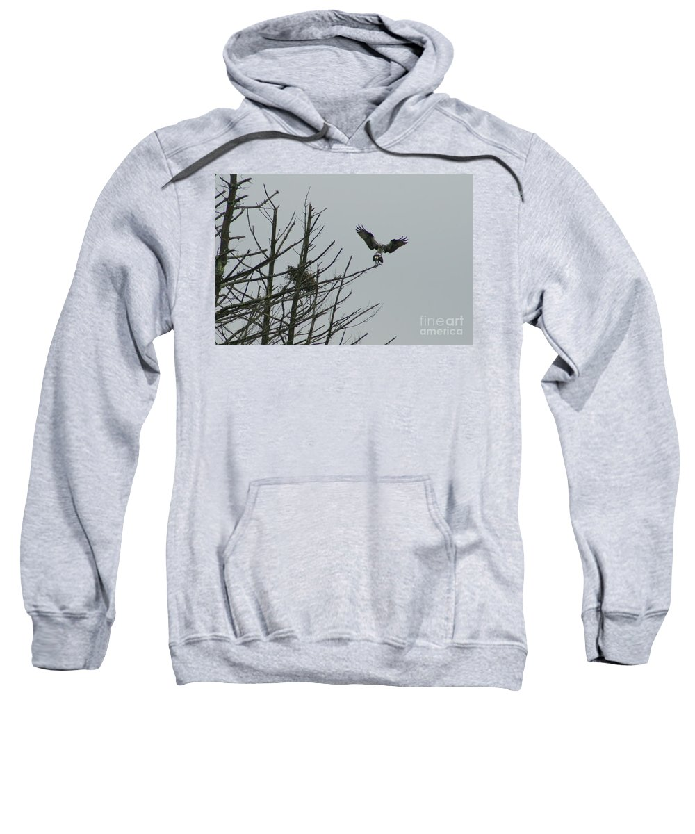 Osprey Sweatshirt featuring the photograph Osprey Love by Neal Eslinger