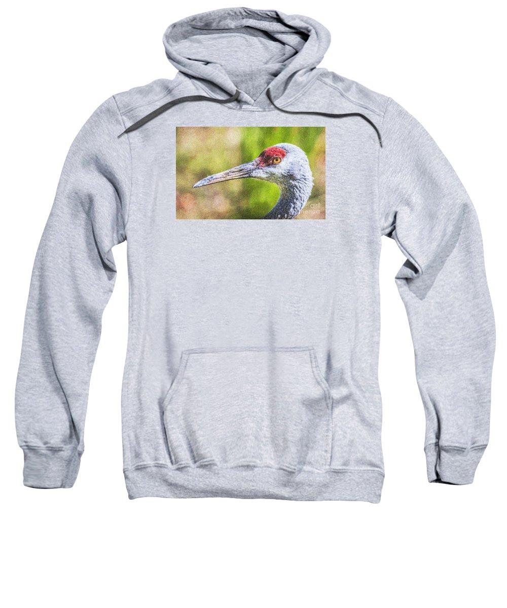Sandhill Crane Sweatshirt featuring the digital art Sandhill Crane Grus Canadensis by Liz Leyden