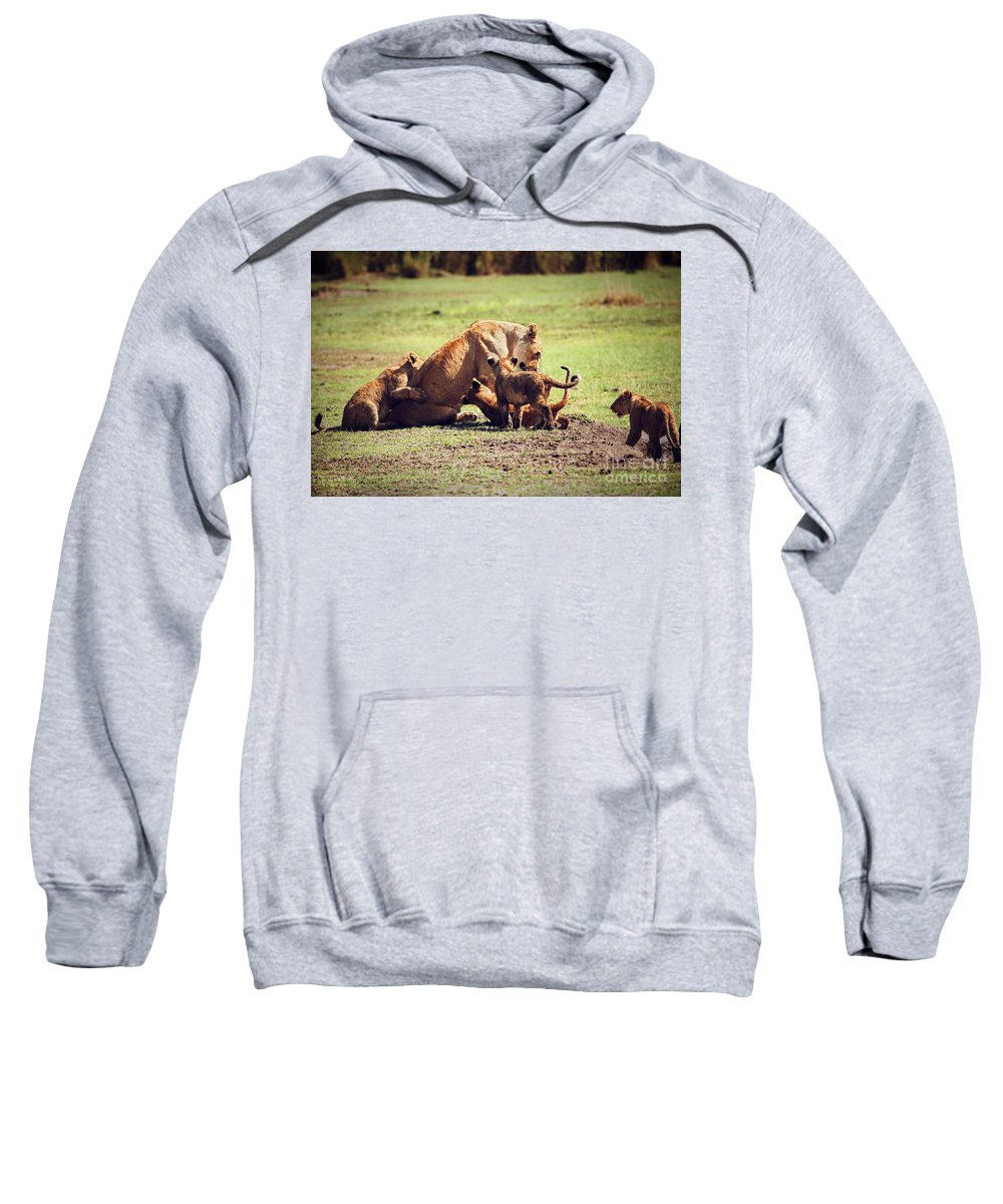 Africa Sweatshirt featuring the photograph Small Lion Cubs With Mother. Tanzania by Michal Bednarek