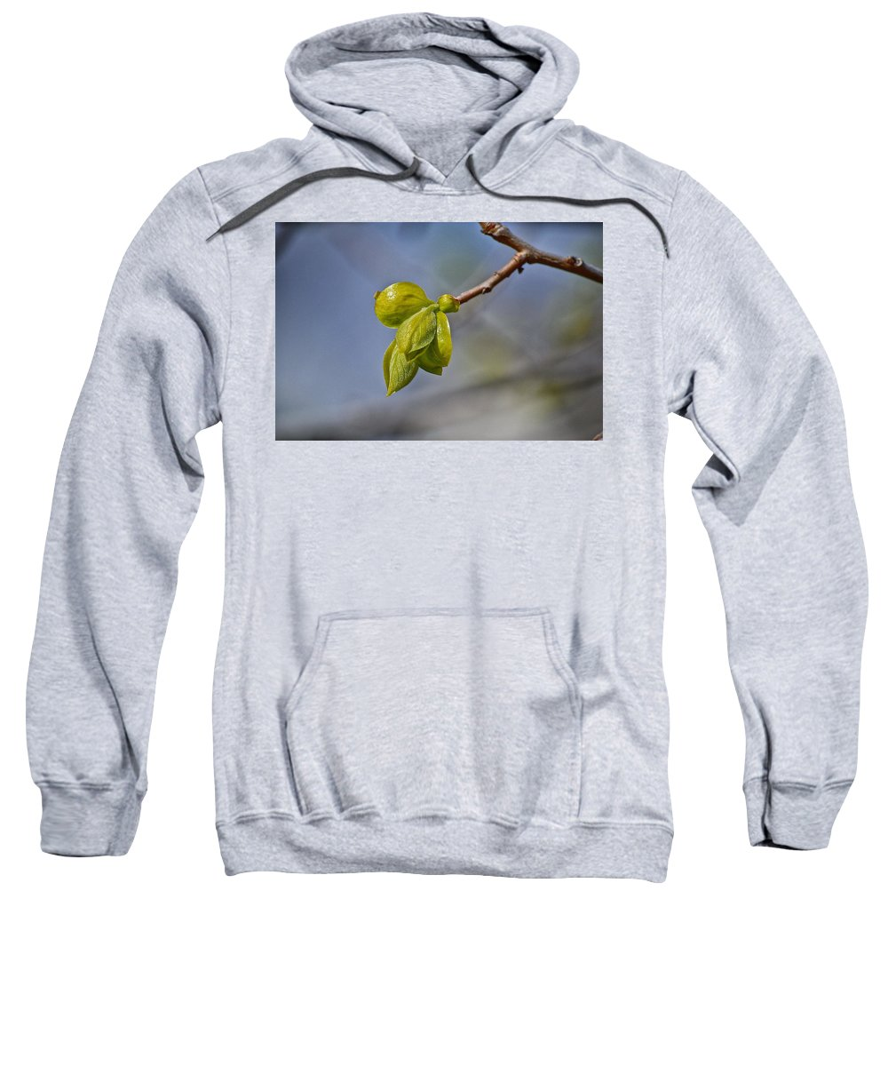 Spring Sweatshirt featuring the photograph Spring Is Coming by Bill Owen