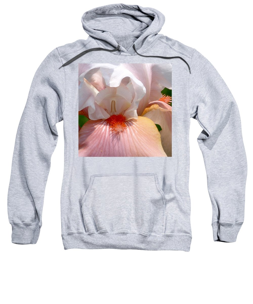 White And Pink Sweatshirt featuring the photograph White And Pink Iris 2 by David Hohmann