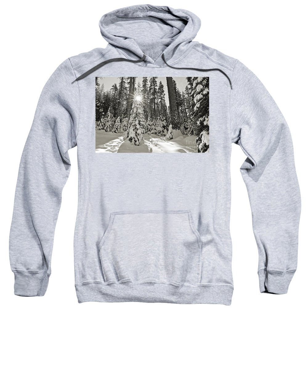 Forest Sweatshirt featuring the photograph Winter Wonderland - Badger Pass In Yosemite National Park by Jamie Pham