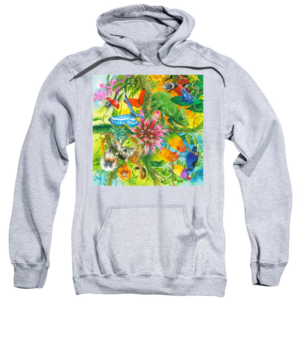 John Francis Sweatshirt featuring the painting Wonders Of Nature by MGL Meiklejohn Graphics Licensing