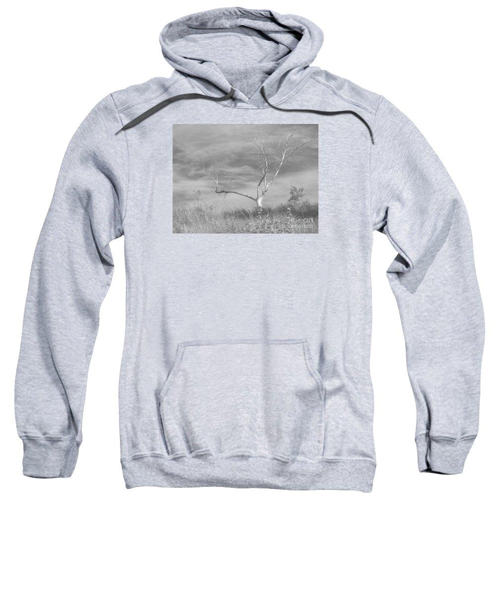 Tree Sweatshirt featuring the photograph Bereft by Ann Horn