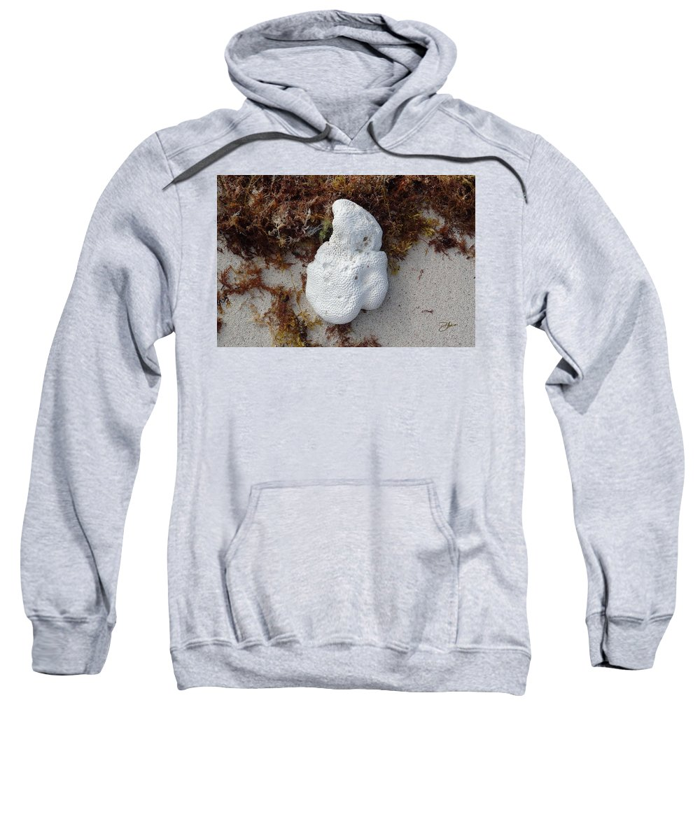 Coral Sweatshirt featuring the photograph Coral Sands by Dancin Artworks